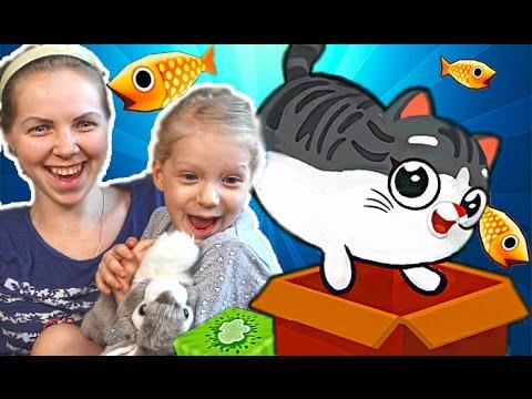 Igraem-v-Kotyat-kitty-in-the-box-2-Prygaem-v-korobku-detskaya-razvlekatelnaya-igra-pro-kotyat-ot-Ffgtv