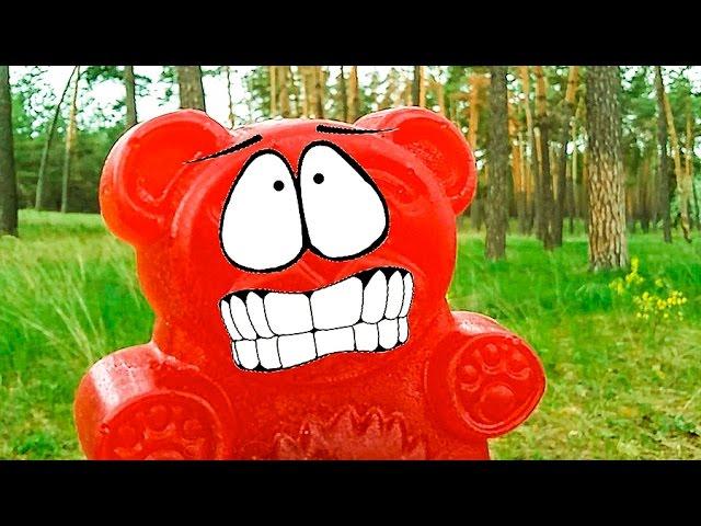 PRIKLYUCHENIYA-ZHELEJNOGO-MEDVEDYA-ZHelejnyj-medved-POTERYALSYA-V-LESU-ZHelejnogo-medvedya-ukrali