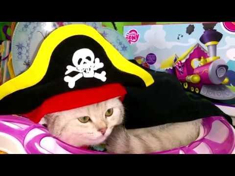 Piraty-Karibskogo-morya-5-Video-dlya-detej-Koshechka-Simka-PIRAT-SHERIF-DOKTOR-Nastyushik
