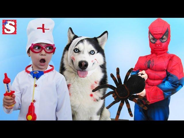 SPIDERMAN-Spasenie-sobaki-Delaem-Ukol-CHELOVEK-PAUK-Video-dlya-detej-GIANT-SPIDER-ATTACKS-Toys-Kids