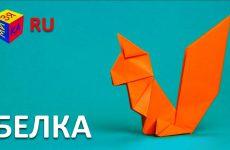 Origami-vmeste-s-nami-BELKA.-Kak-sdelat-belku-iz-bumagi-origami-svoimi-rukami