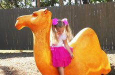 Funny-Baby-Diana-and-Roma-playing-at-the-zoo-and-feed-animals-Video-for-kids