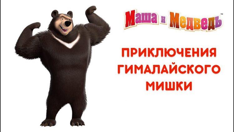 Masha-i-Medved-Priklyucheniya-Gimalajskogo-Mishki-Vse-serii-podryad