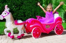 Diana-Pretend-Play-with-Princess-carriage