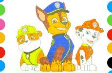 Raskraska-SHHenyachii-patrul.-Video-dlya-detei
