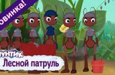Lesnoj-patrul-Luntik-Novaya-seriya.-Premera