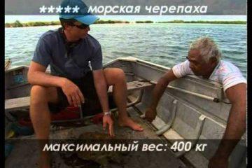 Dialogi-o-rybalke-Morskaya-rybalka