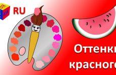 Uchim-tsveta.-Volshebnaya-kistochka-i-ottenki-krasnogo-i-rozovogo.-Multik-raskraska-dlya-detej