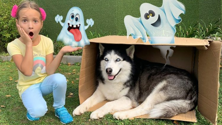 Sofia-buys-A-new-Toy-house-for-the-Dog-Sofiya-nashla-Sobaku-i-pokupaet-ej-Novyj-Igrovoj-domik